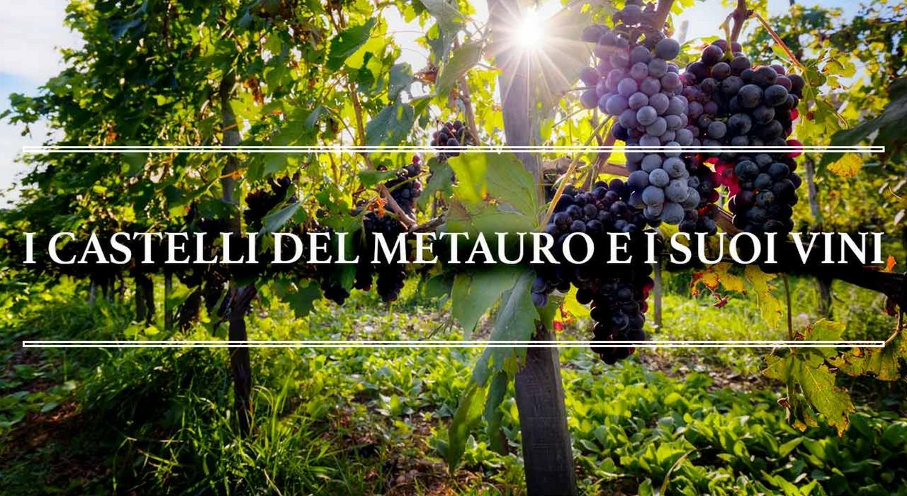 itinerario-vino
