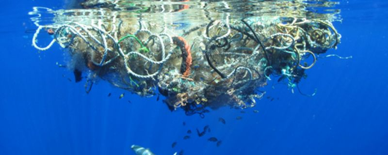 Marina dei Cesari e Clean Sea Life insieme per un mare più pulito
